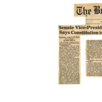 Senate Vice-President Says Constitution is a Farce